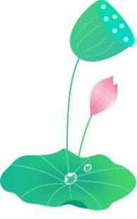 今日立夏 万物繁茂-幽兰花香